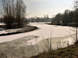 Traces sur l'étang gelé.